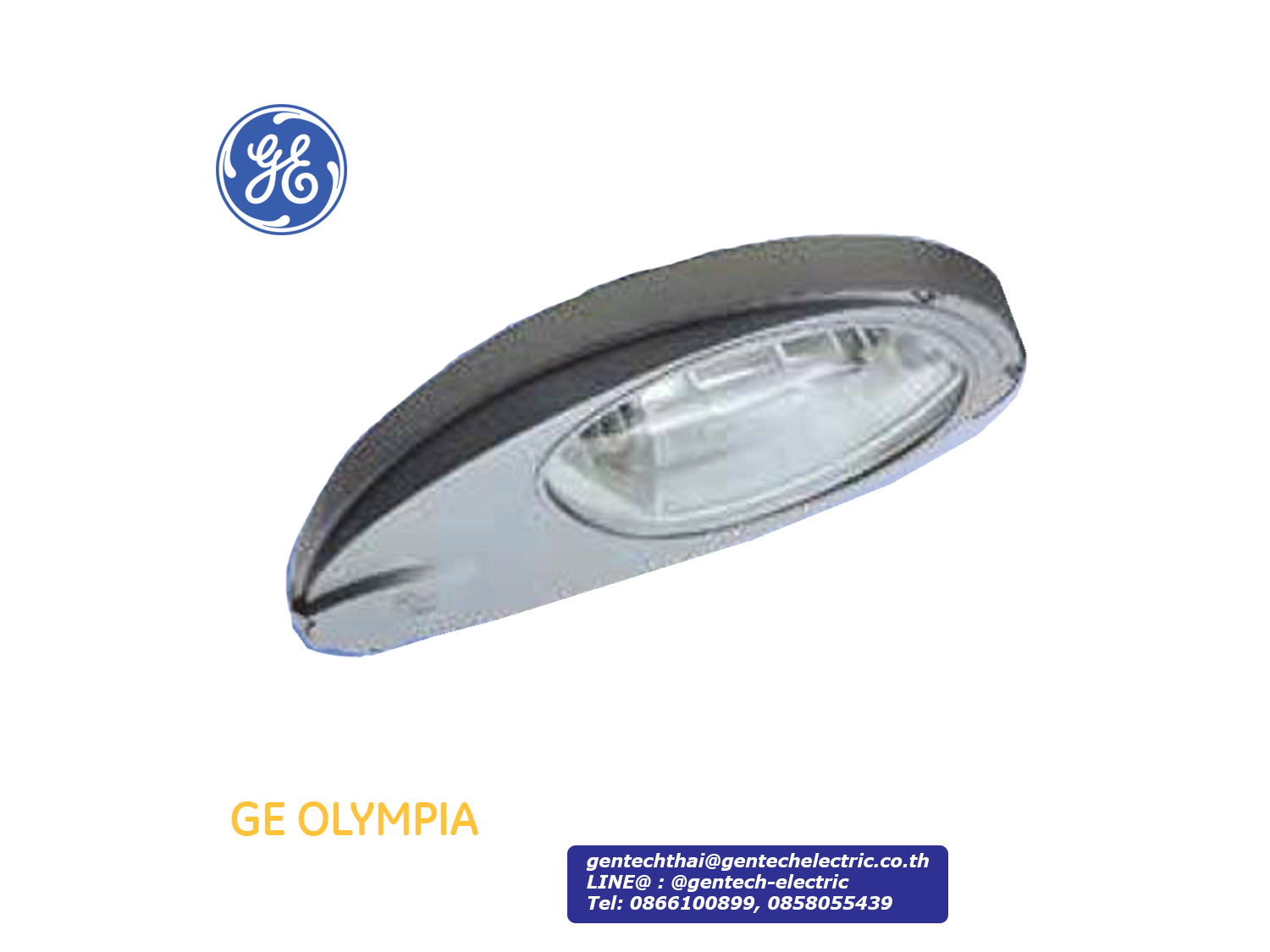 GE HPS Streetlight OLYMPIA 250W (100-400W optional); SKU: AF21262, OLY25AS8EADSG